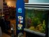 dierenwinkel_haarlem-17