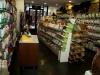 dierenwinkel_haarlem-20