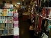 dierenwinkel_haarlem-22