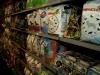 dierenwinkel_haarlem-3